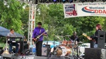 Chris Canas Band at Westland Blues Fest